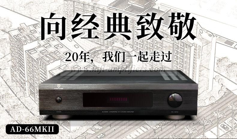 ToneWinner AD-66MKII Hi-Fi Integrated amplifier & power Amp Class A