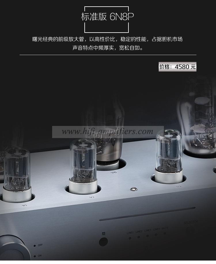 HUISANXIAN T-300B Hi-end Single-ended Class A 300B Vacuum tube Amplifier