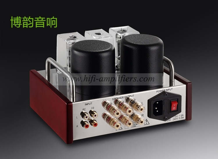 REISONG Boyuu A2 Mini Single-ended 6P14/EL84 Vacuum Tube Amplifier