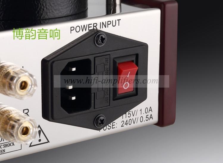 REISONG Boyuu A2 Mini Single-ended 6P14/EL84 Vacuum Tube Amplifier