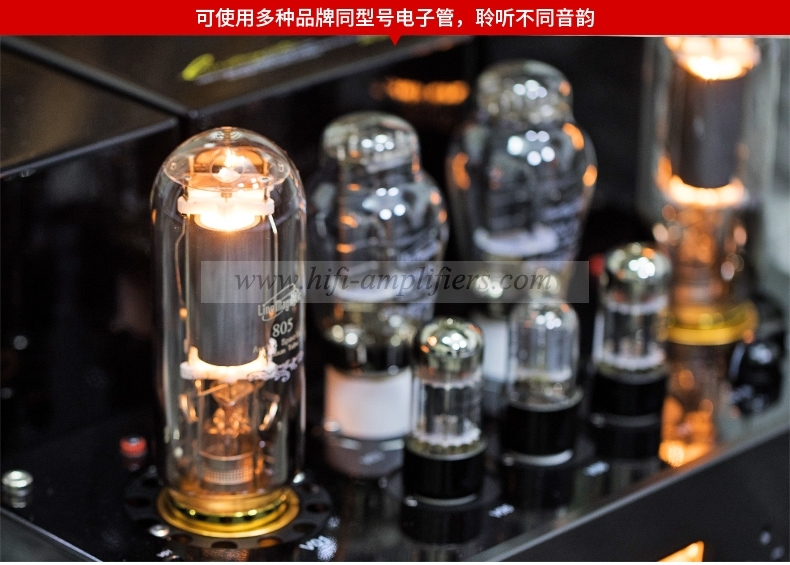 Line Magnetic LM-508IA Hifi 805 Integrated Vacuum Tube Amplifier
