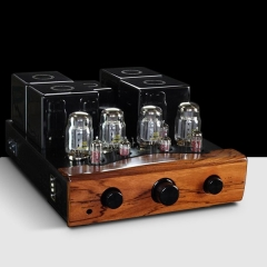 YarLand T88-P Hifi KT88 Vacuum tube Integrated Amplifier EUR