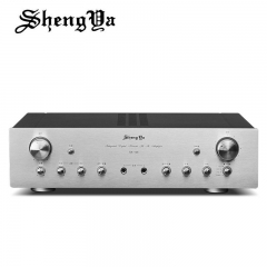 Shengya SK-128 Karaoke Kara OK KTV Integrated Amplifier
