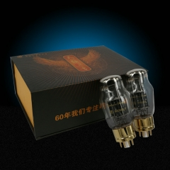 Shuguang WE6SL7 electron tube vacuum tubes Best Matched Pair