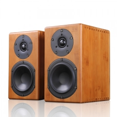 PAIYON Zhu-Yun HiFi Audiophile Loudspeaker Tube amplifier Passive Bookshelf Speakers