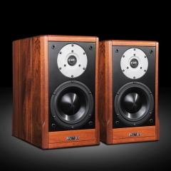 PAIYON P9 HiFi Passive Bookshelf Loudspeaker With MOREL TICW 638 + ST1108 Unit