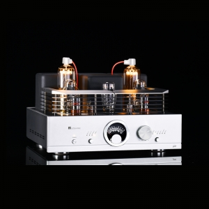 MUZISHARE R100 300B push 845 211 805 Single-ended Class A HiFi tube Amplifier Balance & Phono output Upgraded