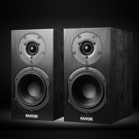 PAIYON P5 HiFi Wood Bookshelf speakers Passive Speaker 2.0 Mini Desktop Home Theater