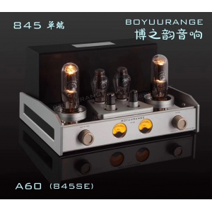 REISONG Boyuu A60 845 Single-ended tube Amplifier HIFI Intergrated Amplifier Brand New